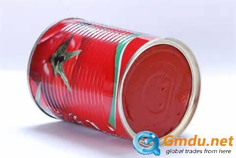 tomato sauce/paste, ketchup