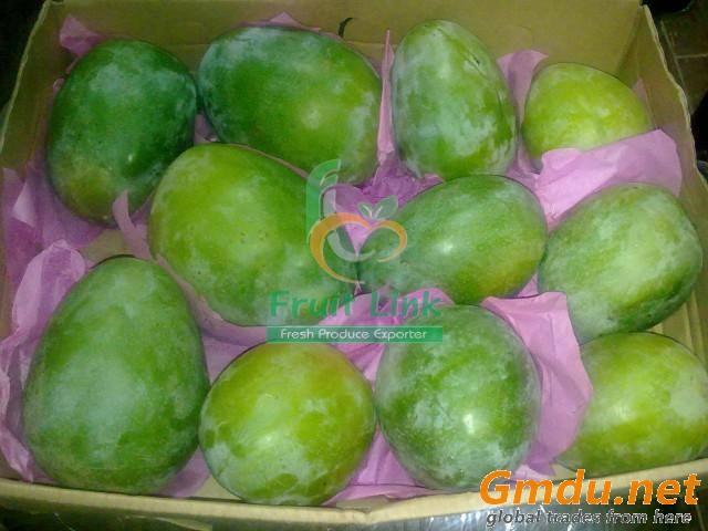 Egyptian fresh mango