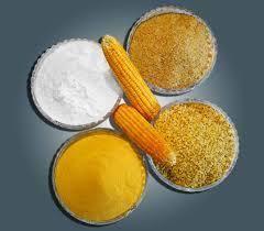 Corn Starch & Derivative Products