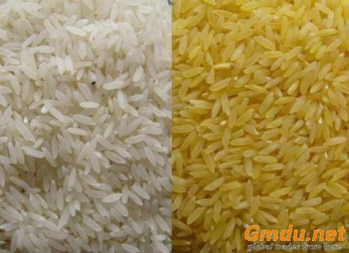 Rice Basmati & Non-Basmati Long Grain
