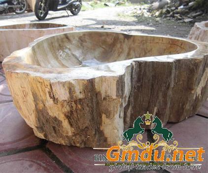 Petrified Wooden Stone (Fossil) Washbasin