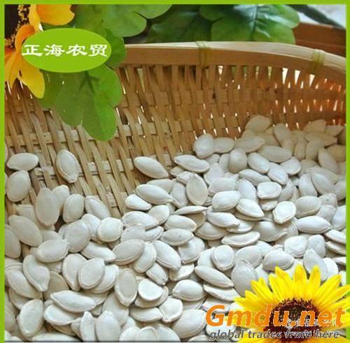 pumpkin seeds shine skin