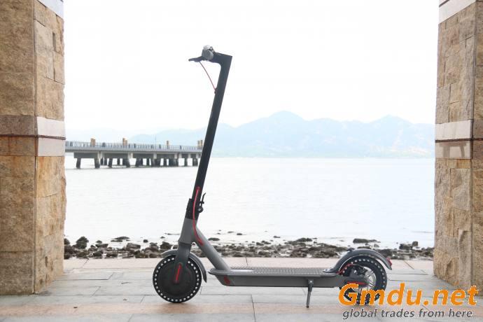 E bike E scooter