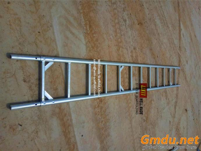 Construction Formwork Scaffolding Steel Access Ladder