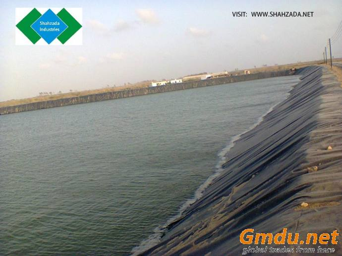 HDPE/LLDPE Geomembrane Liner and Installation (if required)