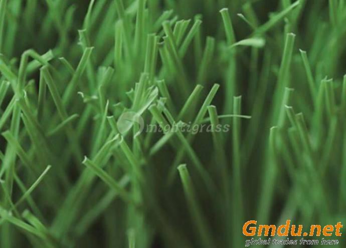 Residential Artificial Grass, MT-Venus