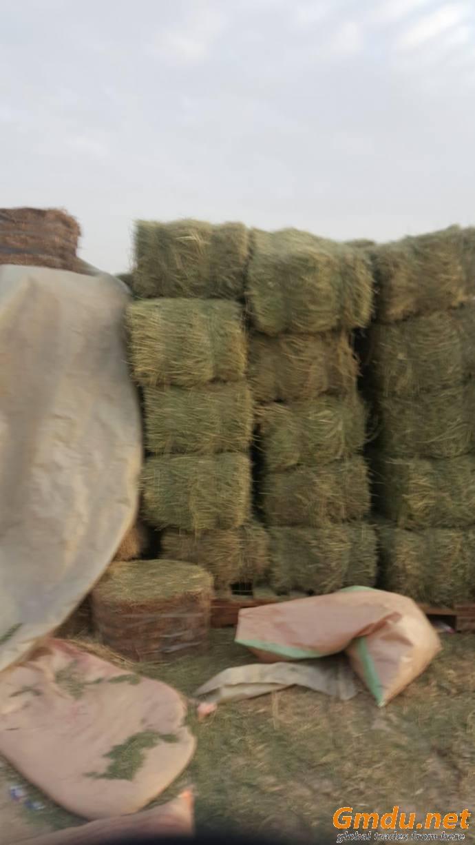 Wheat Straw, Rice Husk, Other Animal Feed