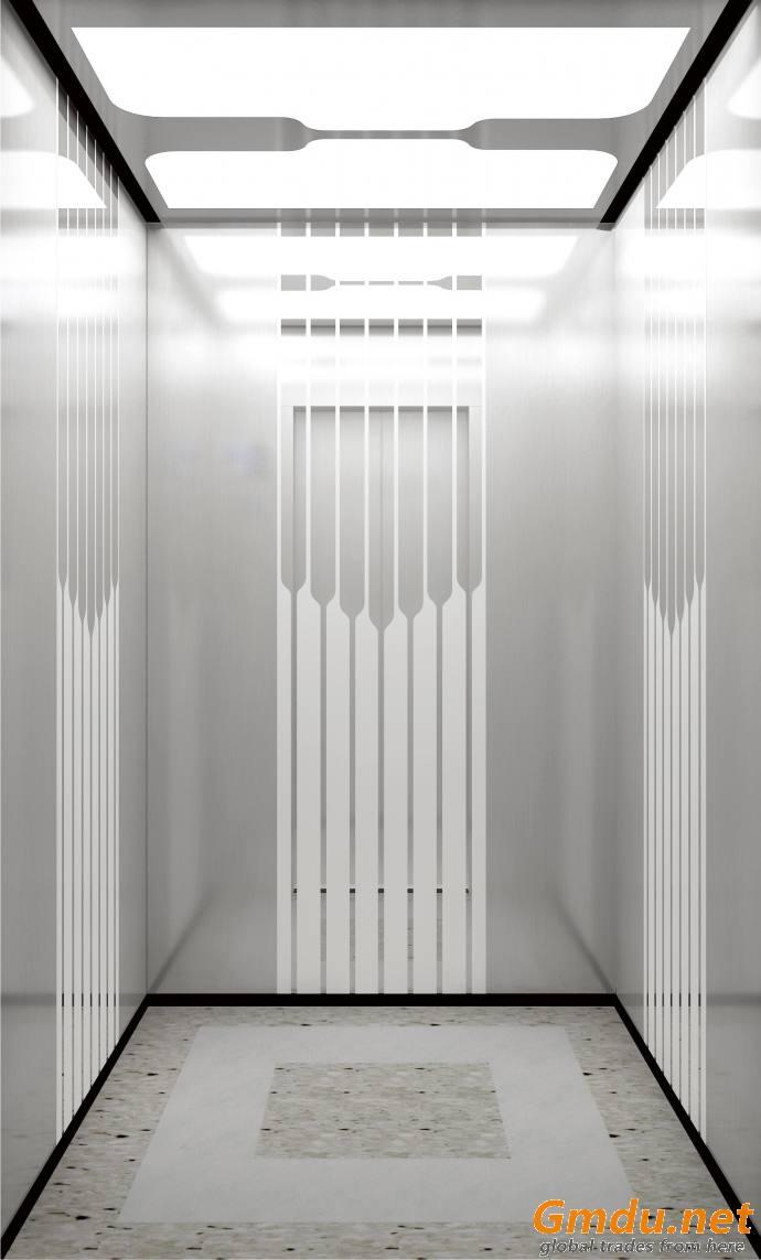 Schneider Brand Passenger Elevator (German Origin)