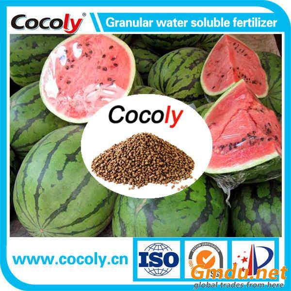 Cocoly brand fertilizer SGS granular water soluble