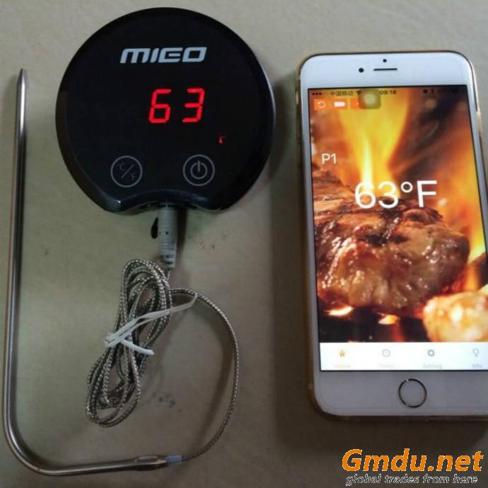 Cooking Thermometer and Timer, Smoker Temperature Probe