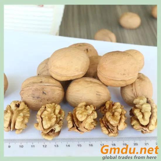 Walnut/ Dry Walnut / Kernel / Snack Food/ Agro Food/ Snack Food/Raw Walnut