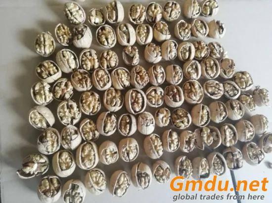 XIN2 Walnut Inshell