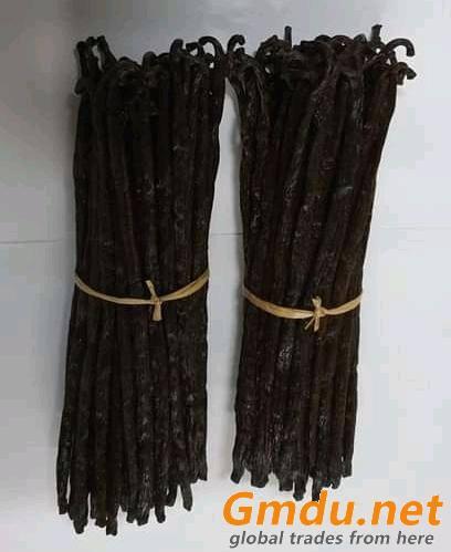 Vanilla Beans Seller from Madagascar