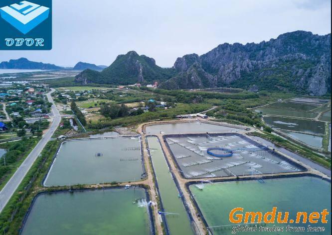 OBOR HDPE Geomembrane for Shrimp Farming