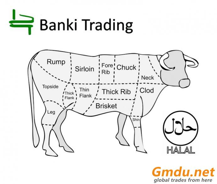 Palm Oil and related products, beef tallow, urea, wheat, Halal certified chicken, beef and mutton, riversands, silica