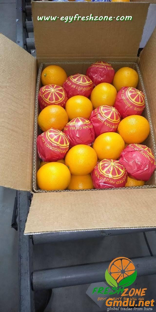 Egyptian Valencia Orange